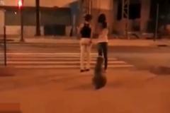 俩美女无视交通规则硬闯红灯, 这只狗给她们好好上了一