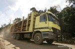 拉这么多木材走烂泥路还这么轻松,老司机表示不服