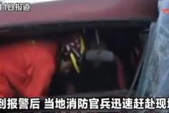 淡定老司机横遭车祸,被卡车内抽烟等救援