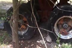 卡友检查老车却发现异样,当他割开轮胎后,吃惊了