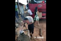 美女货车司机集锦,真养眼!