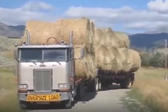 史诗级最滑稽和疯狂的卡车表演时刻!