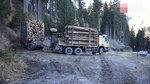 如何做一个优秀的伐木卡车司机,看卡车司机们各显神通