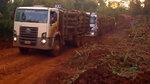 来看看巴西的木材货车,泥地逃生特别耐用