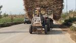 印度三哥开拖拉机,这技术真不是盖得,俩轮也能拐弯!