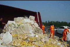 货车拉土豆高速侧翻 网友:4.2拉10吨不翻才怪
