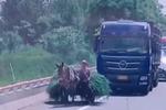 驴车上高速挡道 网友:这样算是卡车了 就是马力不足