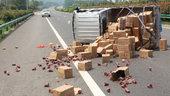《大车小事》货车高速侧翻 卡车敢死队获奖励